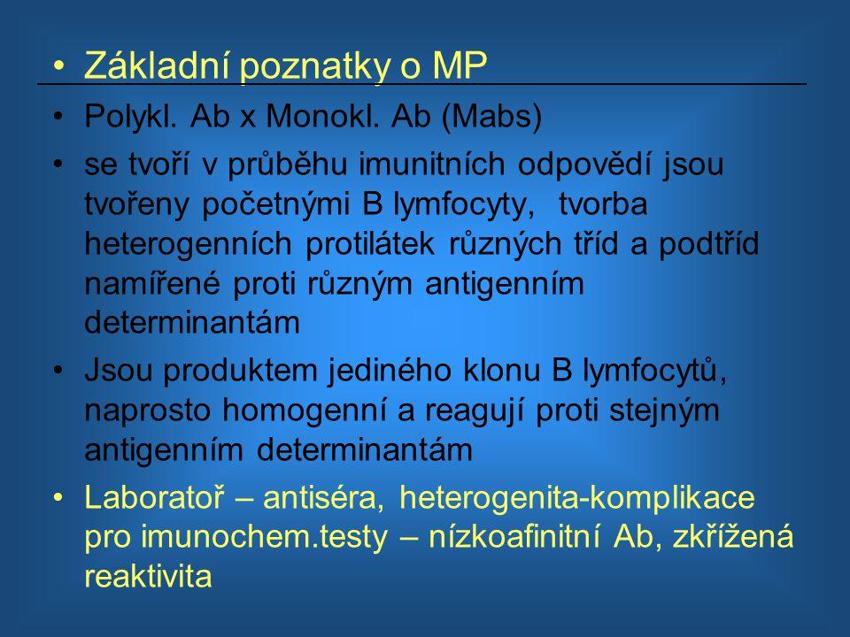 Základní poznatky o MP Polykl. Ab x Monokl. Ab (Mabs) se tvoří v průběhu imunitních odpovědí jsou tvořeny početnými B lymfocyty, tvorba heterogenních
