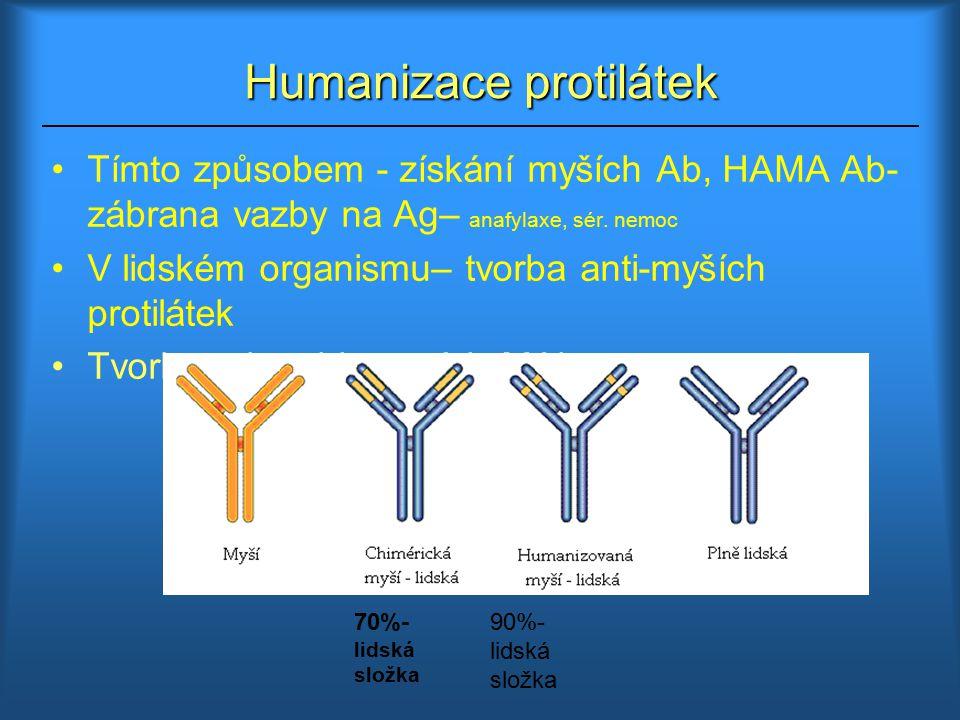 Tvorba rekombinantních Mabs Humanizace Ab-propojení hybridomové a rekombinantní technologie 1.Získání myší Ab pomocí hybridomové teorie 2.Příprava RNA z hybridomové linie 3.Z ní reverzní transkripcí cDNA 4.Pomocí PCR amplifikace části úseků genů myšího Ig, které kódují hypervariabilní domény CDR 5.Náhrada CDR části lidského Ig 6.Vložení genů kódující humanizovanou Mab do savčí buňky, ve které jsou syntetizovány XENOMOUSE – genet.