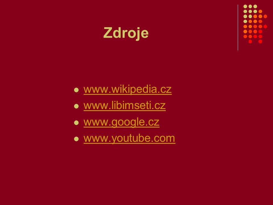 Zdroje www.wikipedia.cz www.libimseti.cz www.google.cz www.youtube.com