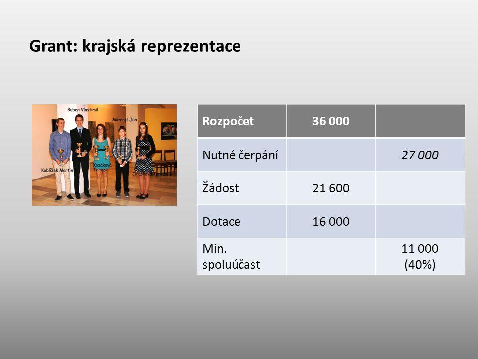 Grant: krajská reprezentace Rozpočet36 000 Nutné čerpání27 000 Žádost21 600 Dotace16 000 Min. spoluúčast 11 000 (40%)