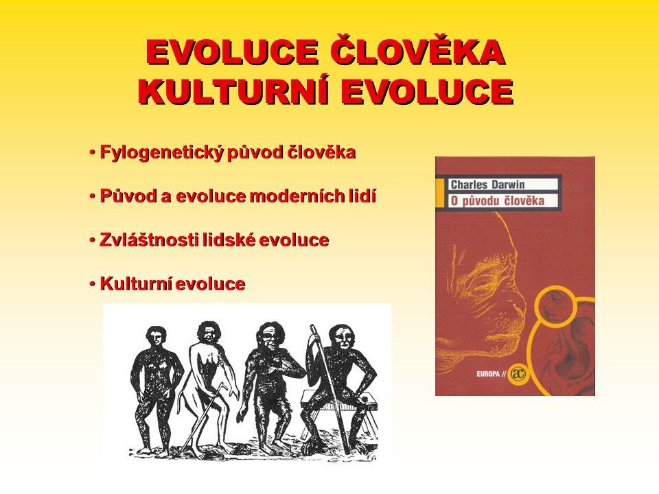 EVOLUCE ČLOVĚKA KULTURNÍ EVOLUCE EVOLUCE ČLOVĚKA KULTURNÍ EVOLUCE Fylogenetický původ člověka Původ a evoluce moderních lidí Zvláštnosti lidské evoluc