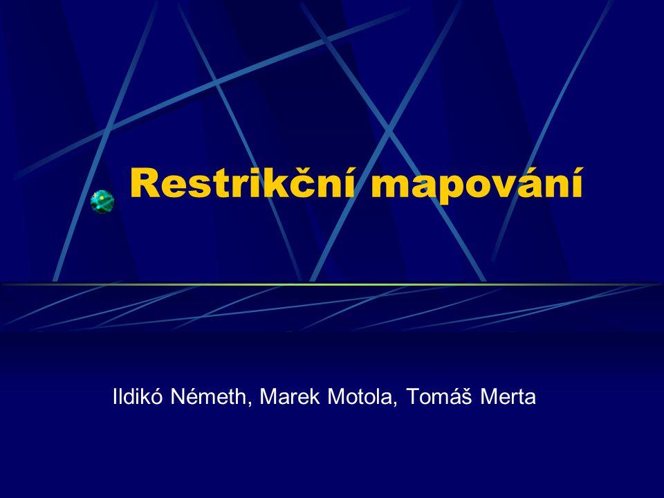 Restrikční mapování Ildikó Németh, Marek Motola, Tomáš Merta