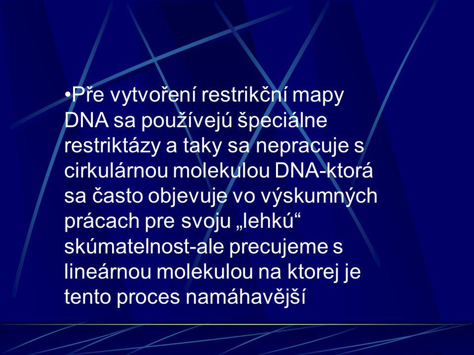 """Pře vytvoření restrikční mapy DNA sa používejú špeciálne restriktázy a taky sa nepracuje s cirkulárnou molekulou DNA-ktorá sa často objevuje vo výskumných prácach pre svoju """"lehkú skúmatelnost-ale precujeme s lineárnou molekulou na ktorej je tento proces namáhavější"""