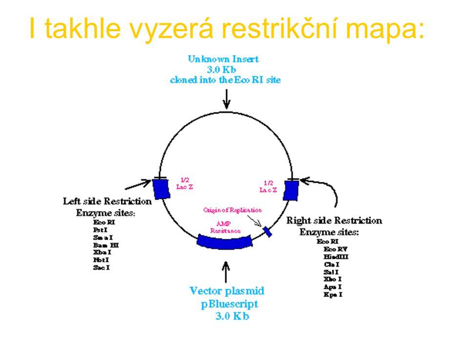 I takhle vyzerá restrikční mapa: