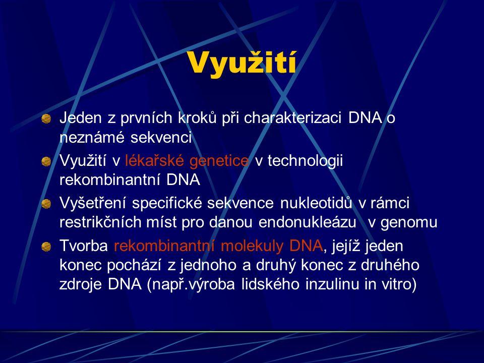 Využití Jeden z prvních kroků při charakterizaci DNA o neznámé sekvenci Využití v lékařské genetice v technologii rekombinantní DNA Vyšetření specifické sekvence nukleotidů v rámci restrikčních míst pro danou endonukleázu v genomu Tvorba rekombinantní molekuly DNA, jejíž jeden konec pochází z jednoho a druhý konec z druhého zdroje DNA (např.výroba lidského inzulinu in vitro)