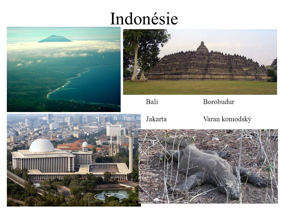 Indonésie BaliBorobudur JakartaVaran komodský