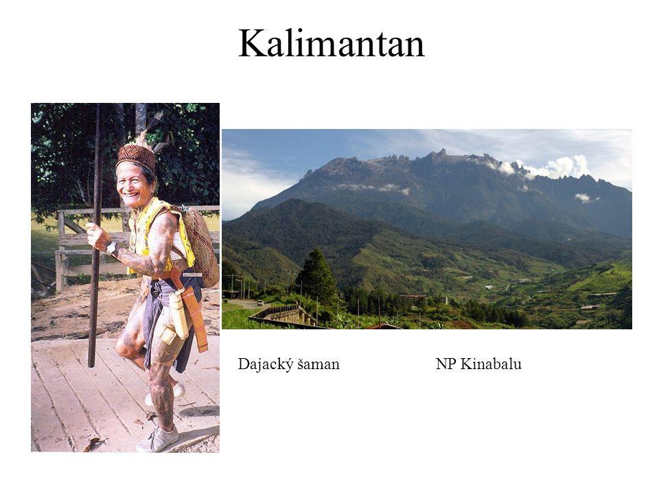 Kalimantan Dajacký šamanNP Kinabalu