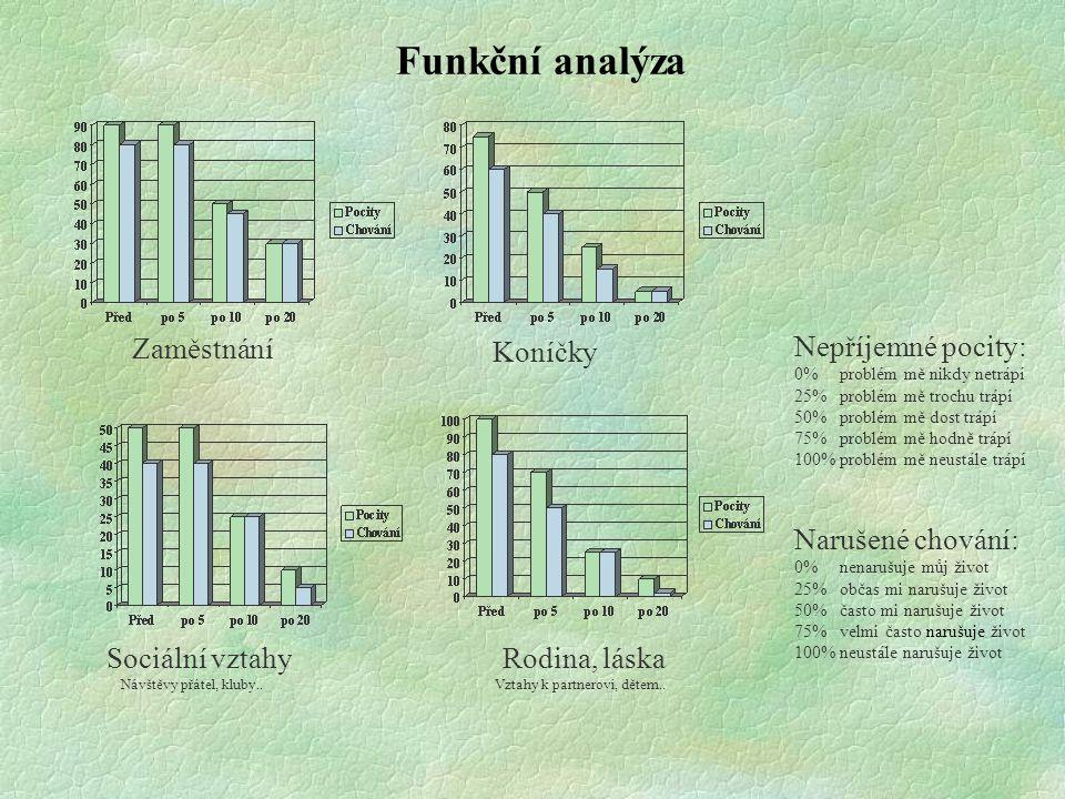 Funkční analýza Zaměstnání Koníčky Sociální vztahy Návštěvy přátel, kluby.. Rodina, láska Vztahy k partnerovi, dětem.. Nepříjemné pocity: 0% problém m