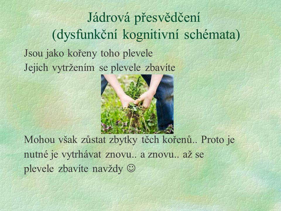 Jádrová přesvědčení (dysfunkční kognitivní schémata) Jsou jako kořeny toho plevele Jejich vytržením se plevele zbavíte Mohou však zůstat zbytky těch k