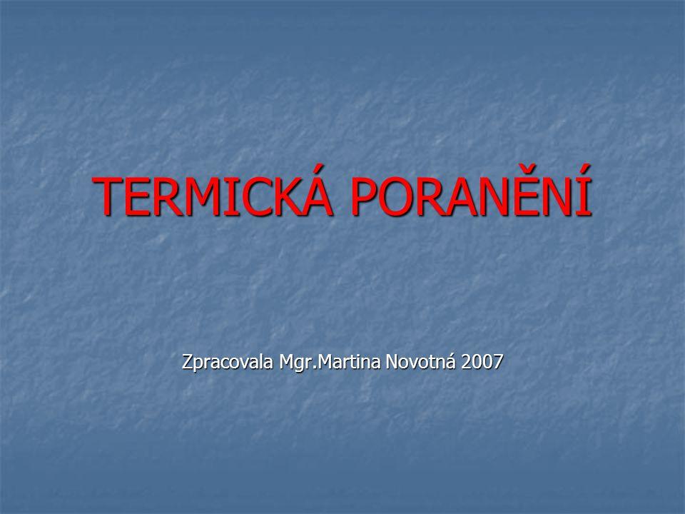 TERMICKÁ PORANĚNÍ Zpracovala Mgr.Martina Novotná 2007