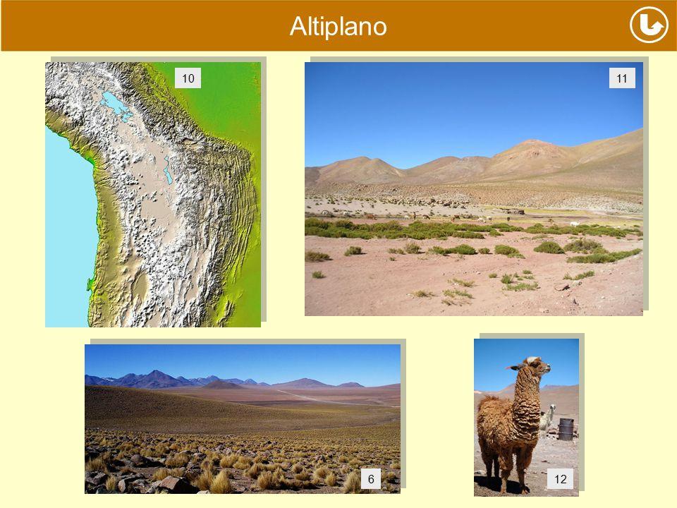 Altiplano 6 1011 12