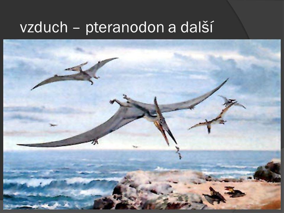 vzduch – pteranodon a další