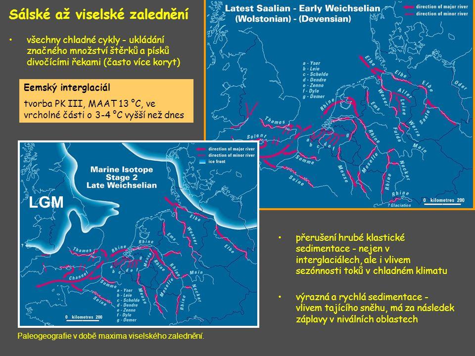 Sálské až viselské zalednění všechny chladné cykly - ukládání značného množství štěrků a písků divočícími řekami (často více koryt) přerušení hrubé kl