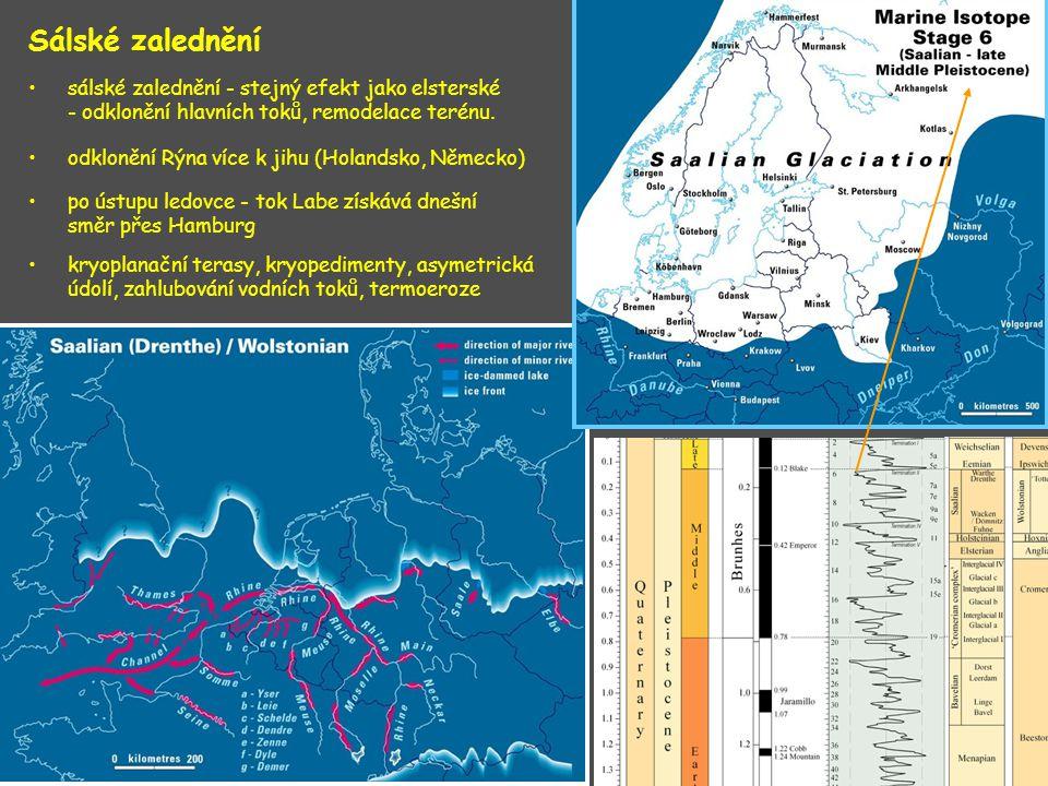 Sálské zalednění sálské zalednění - stejný efekt jako elsterské - odklonění hlavních toků, remodelace terénu. odklonění Rýna více k jihu (Holandsko, N