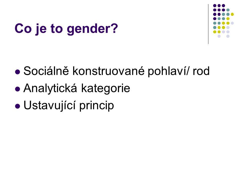 Sociálně konstruované pohlaví/ rod Analytická kategorie Ustavující princip