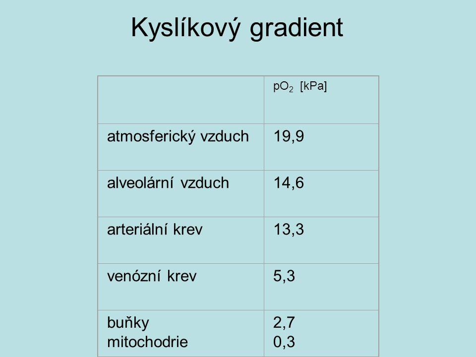 pO 2 [kPa] atmosferický vzduch19,9 alveolární vzduch14,6 arteriální krev13,3 venózní krev5,3 buňky mitochodrie 2,7 0,3 Kyslíkový gradient
