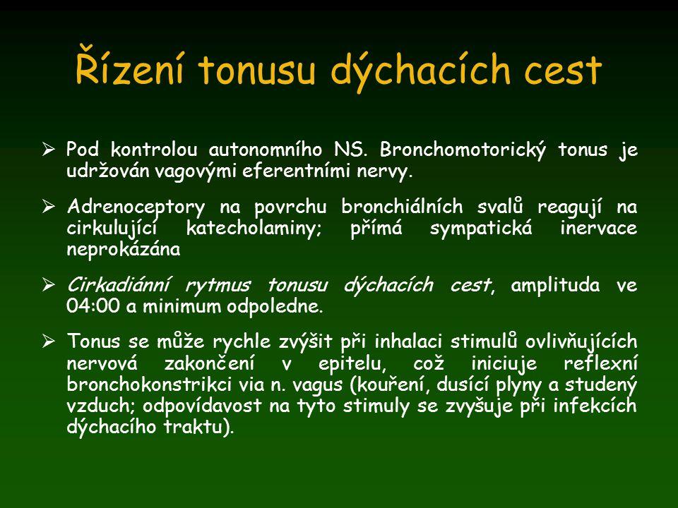 Řízení tonusu dýchacích cest  Pod kontrolou autonomního NS. Bronchomotorický tonus je udržován vagovými eferentními nervy.  Adrenoceptory na povrchu