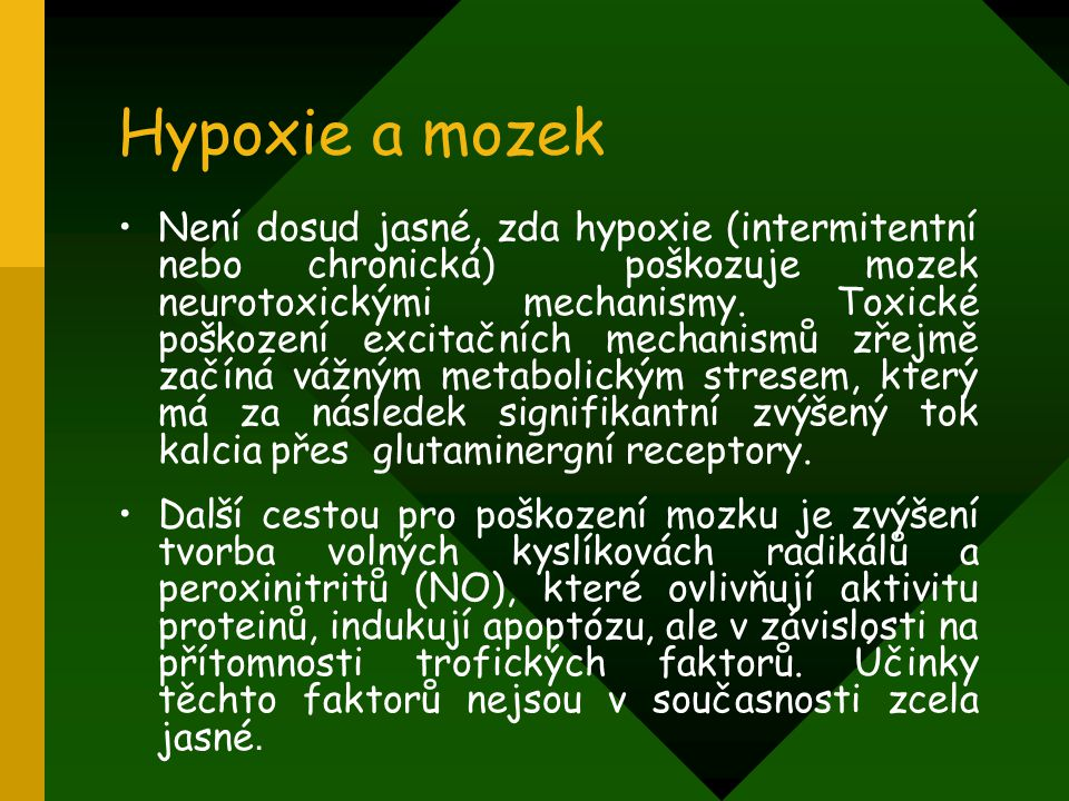 Hypoxie a mozek Není dosud jasné, zda hypoxie (intermitentní nebo chronická) poškozuje mozek neurotoxickými mechanismy. Toxické poškození excitačních