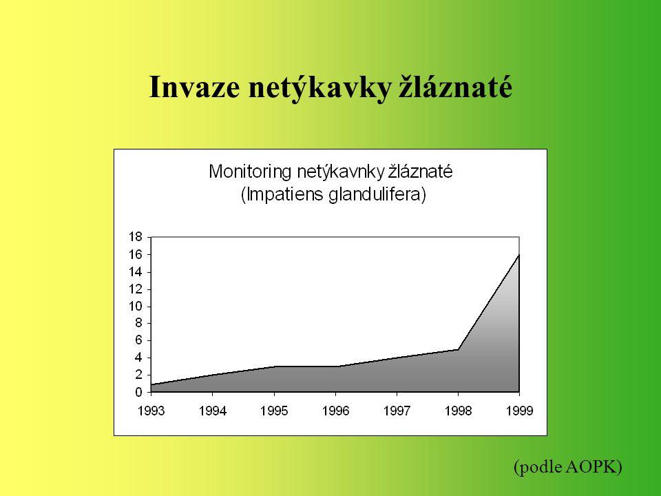Invaze netýkavky žláznaté (podle AOPK)
