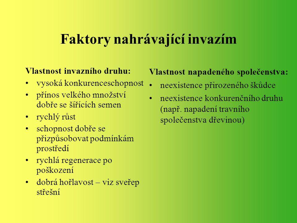 Invazní rostliny ČR BOLŠEVNÍK VELKOLEPÝ (Heracleum mantegazzianum) KŘÍDLATKY KŘÍDLATKA JAPONSKÁ (Reynoutria japonica) KŘÍDLATKA SACHALINSKÁ (Reynoutria sachalinenisis) KŘÍDLATKA ČESKÁ (Reynoutira x bohemica) NETÝKAVKY NETÝKAVKA ŽLÁZNATÁ (Impatiens glandulifera) NETÝKAVKA MALOKVĚTÁ (Impatiens parviflora) ANDĚLINKA LÉKAŘSKÁ (Archangelica officinalis) BOROVICE VEJMUTOVKA (Pinus strobus) ZLATOBÝL KANADSKÝ (Solidago canadensis) ZLATOBÝL OBROVSKÝ (Solidago gigantea) JAVOR JASANOLISTÝ (Acer negundo) TRNOVNÍK AKÁT (Robinia pseudoacacia) PAJASAN ŽLÁZNATÝ (Ailanthus altissima)