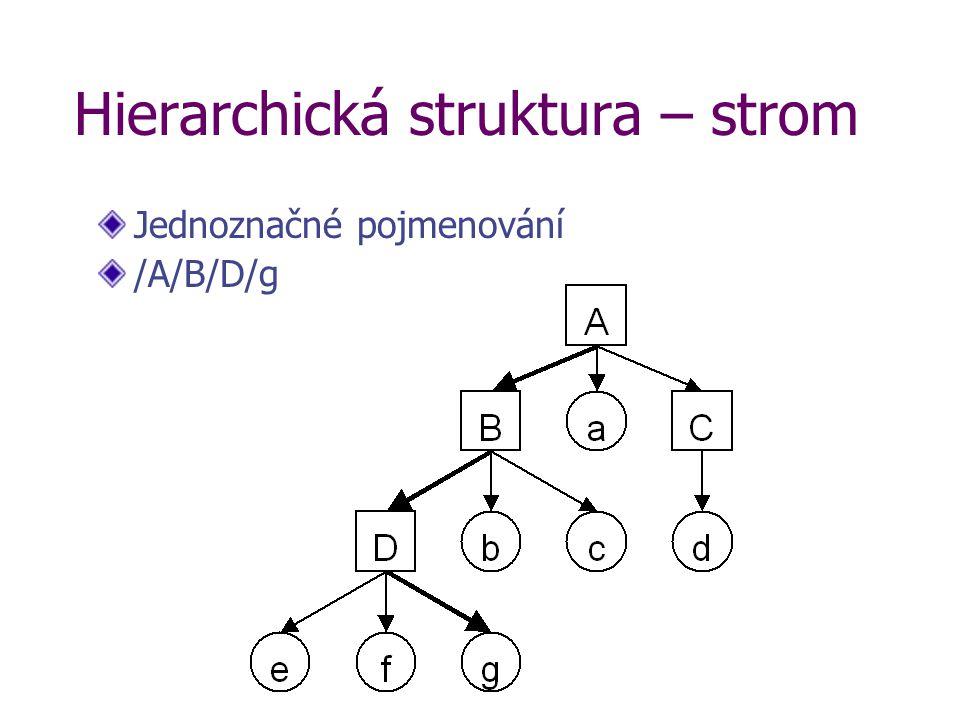 Hierarchická struktura – strom Jednoznačné pojmenování /A/B/D/g