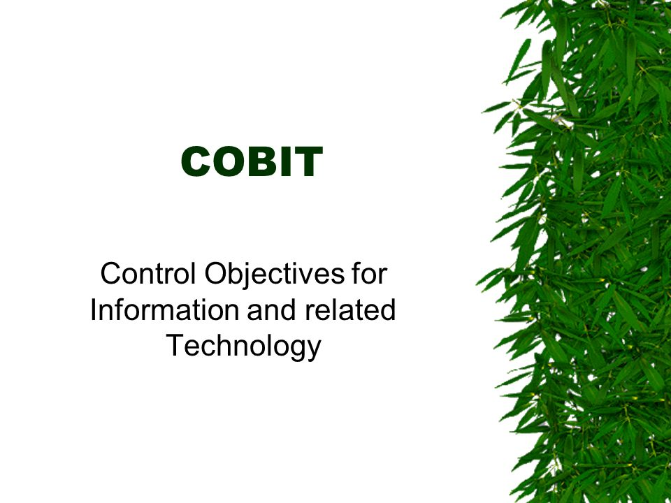 COBIT Control Objectives for Information and related Technology