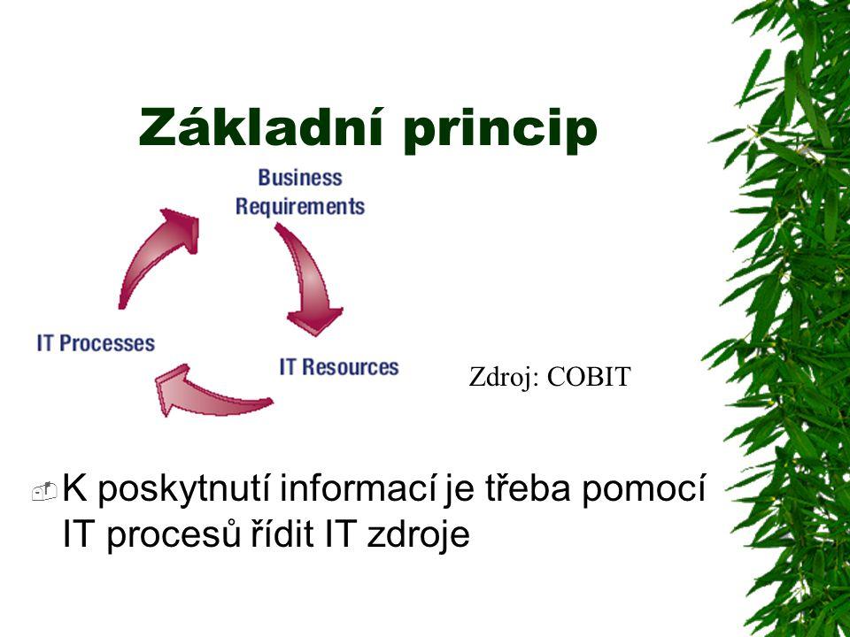 Základní princip  K poskytnutí informací je třeba pomocí IT procesů řídit IT zdroje Zdroj: COBIT