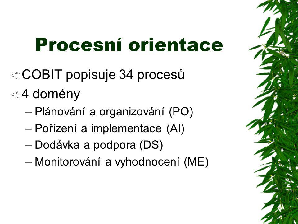 Procesní orientace  COBIT popisuje 34 procesů  4 domény –Plánování a organizování (PO) –Pořízení a implementace (AI) –Dodávka a podpora (DS) –Monitorování a vyhodnocení (ME)