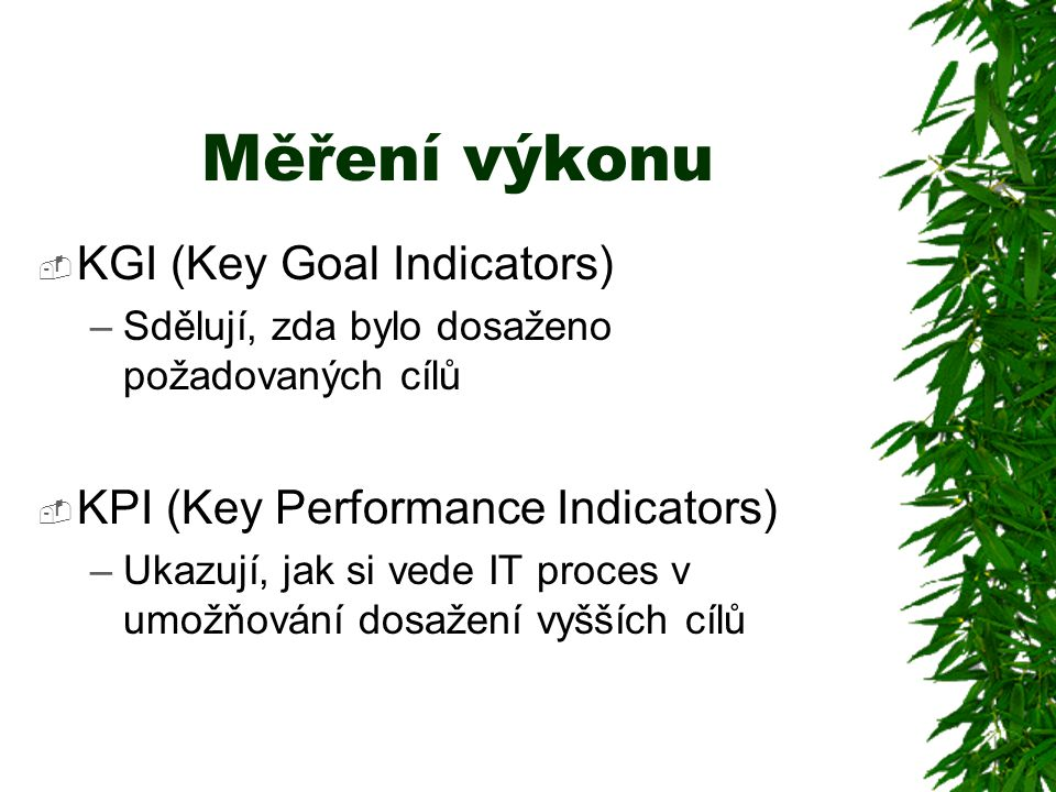 Měření výkonu  KGI (Key Goal Indicators) –Sdělují, zda bylo dosaženo požadovaných cílů  KPI (Key Performance Indicators) –Ukazují, jak si vede IT proces v umožňování dosažení vyšších cílů