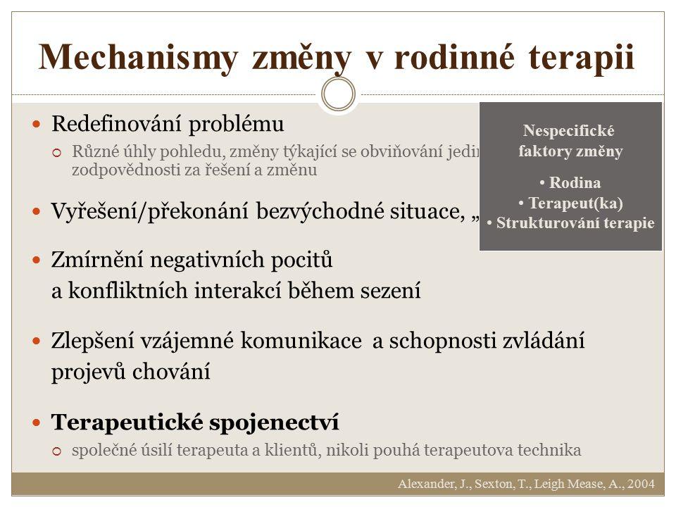 Mechanismy změny v rodinné terapii Redefinování problému  Různé úhly pohledu, změny týkající se obviňování jedince, sdílení zodpovědnosti za řešení a