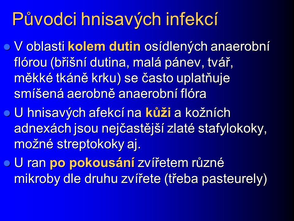 Infekce běžných povrchových poranění Nejběžnějším původcem infekcí je Staphylococcus aureus z kůže Nejběžnějším původcem infekcí je Staphylococcus aureus z kůže Streptococcus pyogenes je nebezpečnější, může vyvolat růži (erysipel) a může vyvolat i ještě horší příznaky pokud je příslušný kmen vybaven mohutnými faktory virulence) Streptococcus pyogenes je nebezpečnější, může vyvolat růži (erysipel) a může vyvolat i ještě horší příznaky pokud je příslušný kmen vybaven mohutnými faktory virulence) Podílet se mohou i beta-hemolytické streptokoky jiných skupin (G, F, C aj.) Podílet se mohou i beta-hemolytické streptokoky jiných skupin (G, F, C aj.) Při cizím tělísku v ráně (tříska,trn) a při hlubších bodných ranách (hlavně vidlemi od koňského hnoje) hrozí i Clostridium tetani Při cizím tělísku v ráně (tříska,trn) a při hlubších bodných ranách (hlavně vidlemi od koňského hnoje) hrozí i Clostridium tetani