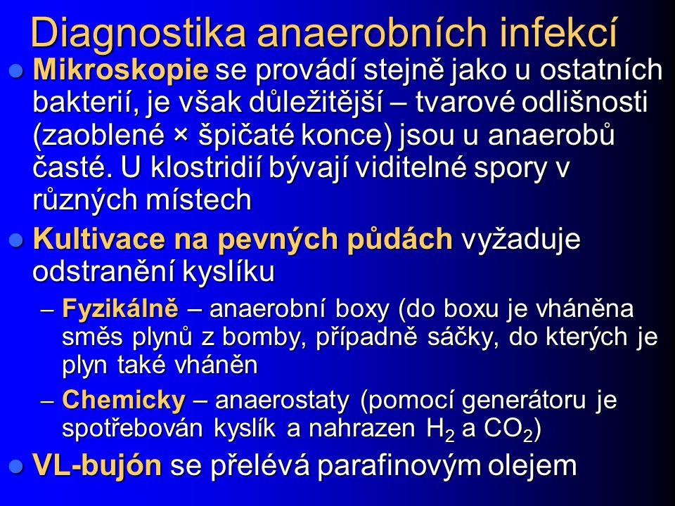 Diagnostika anaerobních infekcí Mikroskopie se provádí stejně jako u ostatních bakterií, je však důležitější – tvarové odlišnosti (zaoblené × špičaté