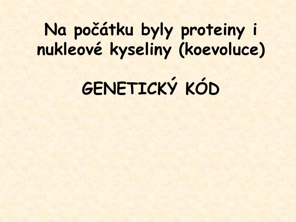 Na počátku byly proteiny i nukleové kyseliny (koevoluce) GENETICKÝ KÓD