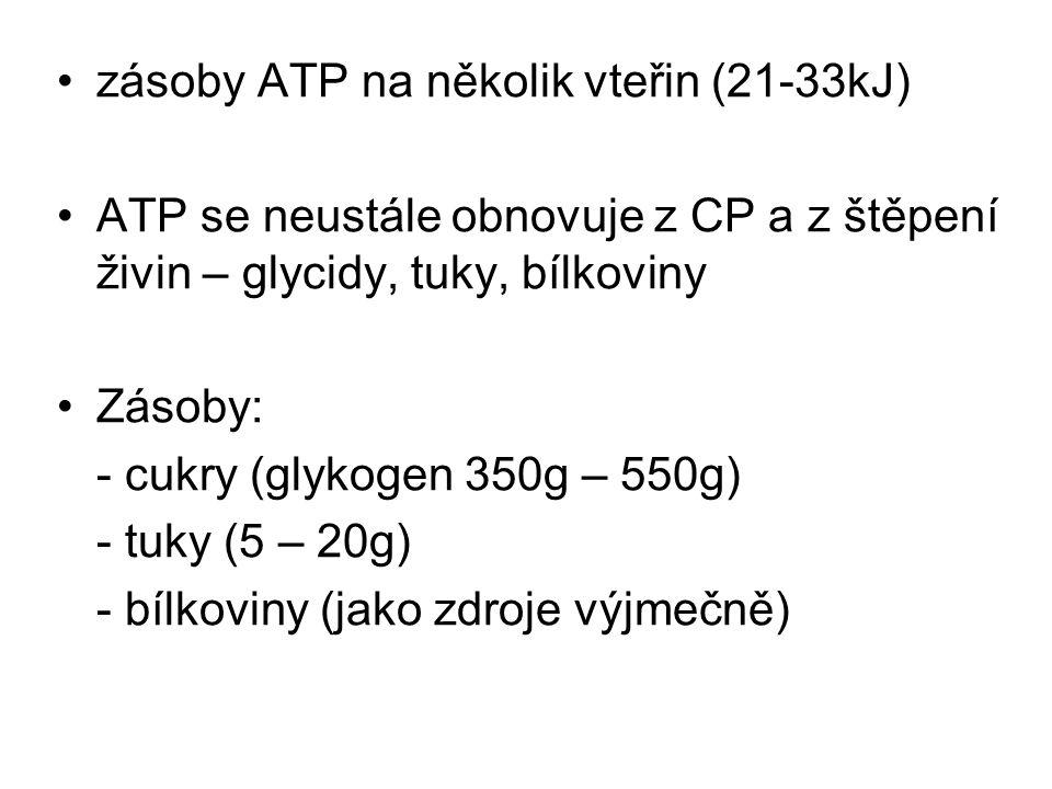 zásoby ATP na několik vteřin (21-33kJ) ATP se neustále obnovuje z CP a z štěpení živin – glycidy, tuky, bílkoviny Zásoby: - cukry (glykogen 350g – 550
