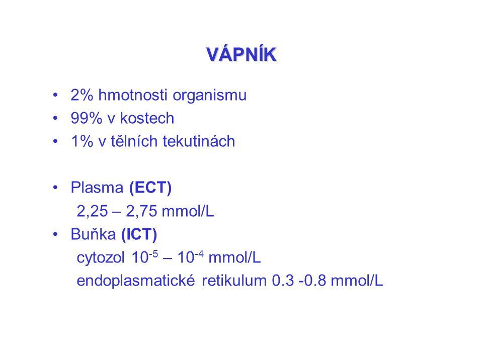 VÁPNÍK 2% hmotnosti organismu 99% v kostech 1% v tělních tekutinách Plasma (ECT) 2,25 – 2,75 mmol/L Buňka (ICT) cytozol 10 -5 – 10 -4 mmol/L endoplasm