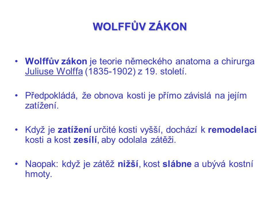 WOLFFŮV ZÁKON Wolffův zákon je teorie německého anatoma a chirurga Juliuse Wolffa (1835-1902) z 19. století. Předpokládá, že obnova kosti je přímo záv