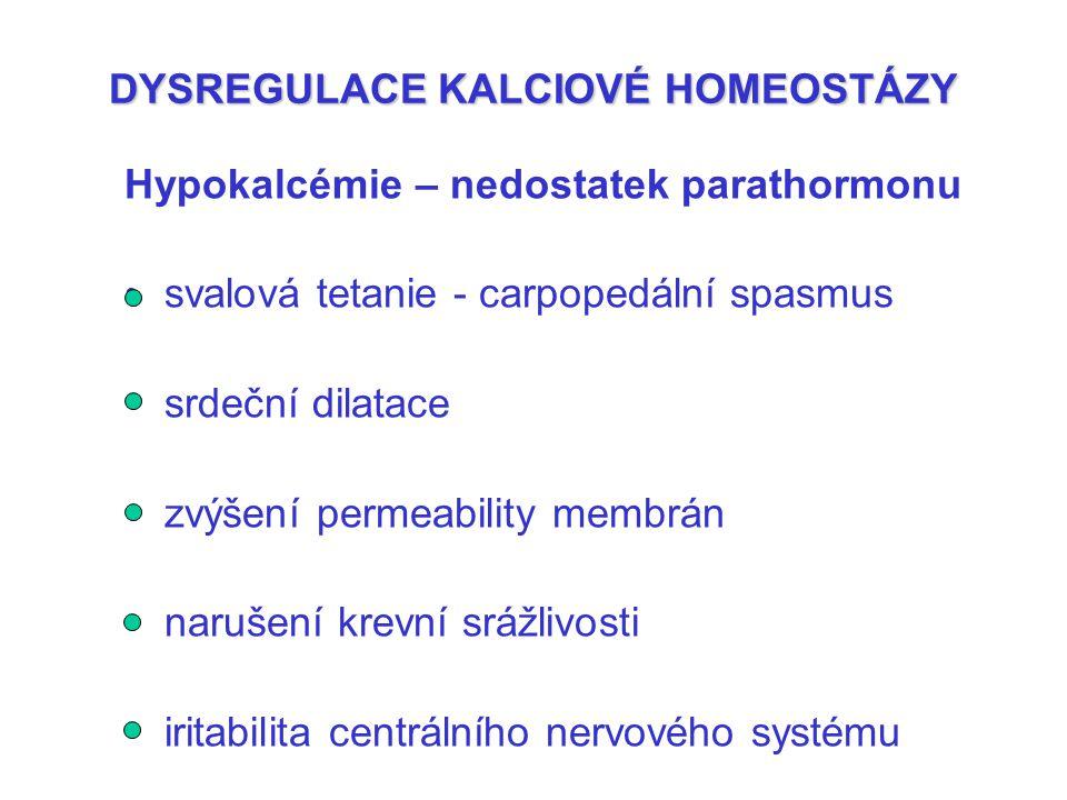 DYSREGULACE KALCIOVÉ HOMEOSTÁZY Hypokalcémie – nedostatek parathormonu svalová tetanie - carpopedální spasmus srdeční dilatace zvýšení permeability me