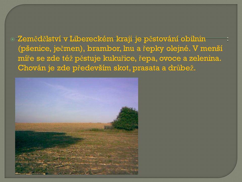  Zem ě d ě lství v Libereckém kraji je p ě stování obilnin (pšenice, je č men), brambor, lnu a ř epky olejné. V menší mí ř e se zde té ž p ě stuje ku