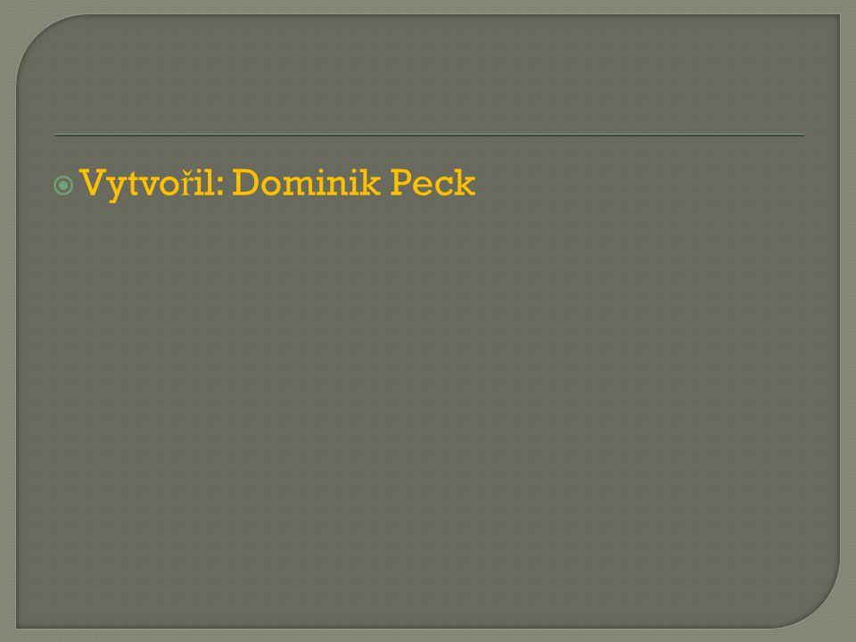  Vytvo ř il: Dominik Peck