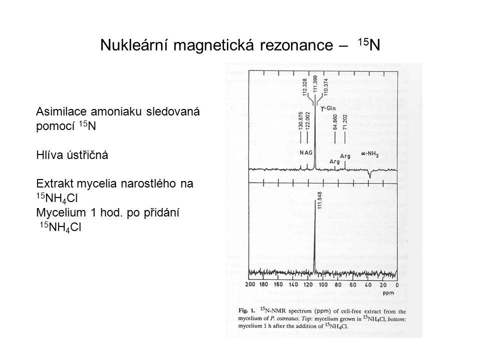 Nukleární magnetická rezonance – 15 N Asimilace amoniaku sledovaná pomocí 15 N Hlíva ústřičná Extrakt mycelia narostlého na 15 NH 4 Cl Mycelium 1 hod.