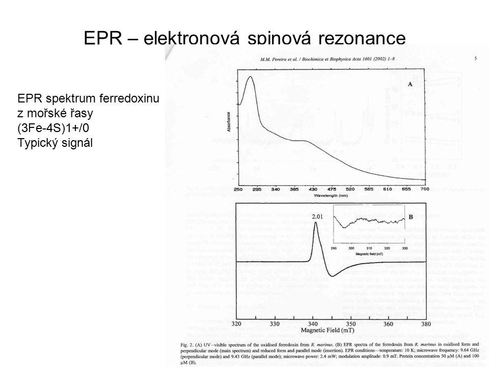 EPR – elektronová spinová rezonance EPR spektrum ferredoxinu z mořské řasy (3Fe-4S)1+/0 Typický signál