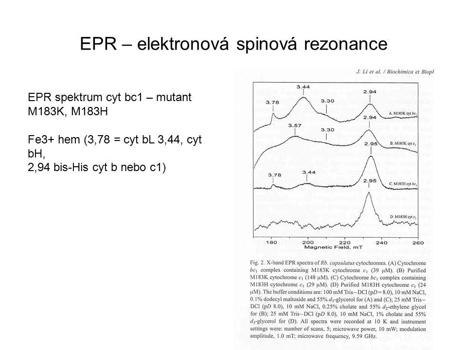 EPR – elektronová spinová rezonance EPR spektrum cyt bc1 – mutant M183K, M183H Fe3+ hem (3,78 = cyt bL 3,44, cyt bH, 2,94 bis-His cyt b nebo c1)