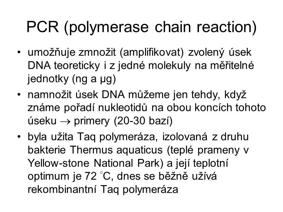 PCR (polymerase chain reaction) umožňuje zmnožit (amplifikovat) zvolený úsek DNA teoreticky i z jedné molekuly na měřitelné jednotky (ng a µg) namnoži