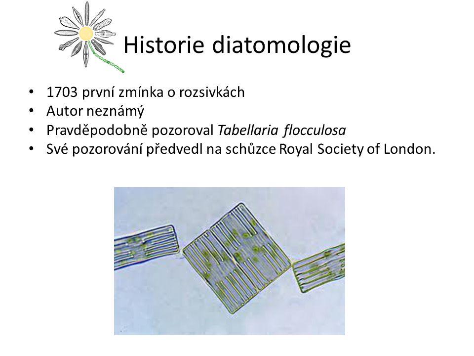 Historie diatomologie 1703 první zmínka o rozsivkách Autor neznámý Pravděpodobně pozoroval Tabellaria flocculosa Své pozorování předvedl na schůzce Ro