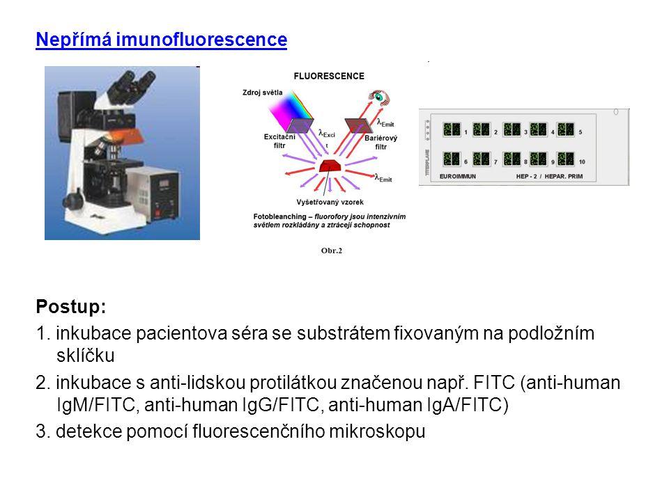 Nepřímá imunofluorescence Postup: 1. inkubace pacientova séra se substrátem fixovaným na podložním sklíčku 2. inkubace s anti-lidskou protilátkou znač