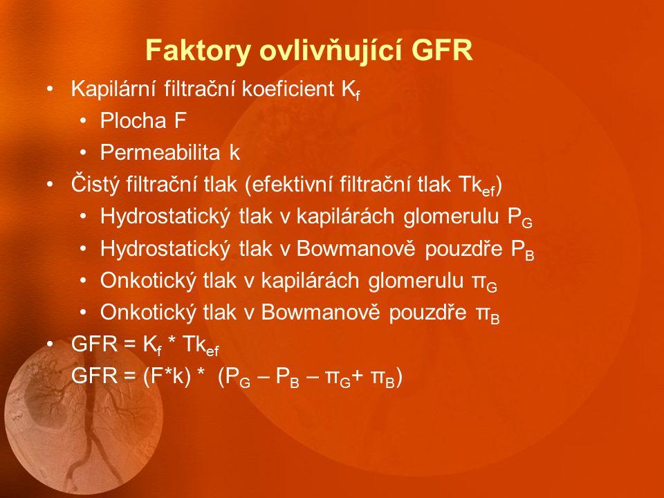 Faktory ovlivňující GFR Kapilární filtrační koeficient K f Plocha F Permeabilita k Čistý filtrační tlak (efektivní filtrační tlak Tk ef ) Hydrostatický tlak v kapilárách glomerulu P G Hydrostatický tlak v Bowmanově pouzdře P B Onkotický tlak v kapilárách glomerulu π G Onkotický tlak v Bowmanově pouzdře π B GFR = K f * Tk ef GFR = (F*k) * (P G – P B – π G + π B )