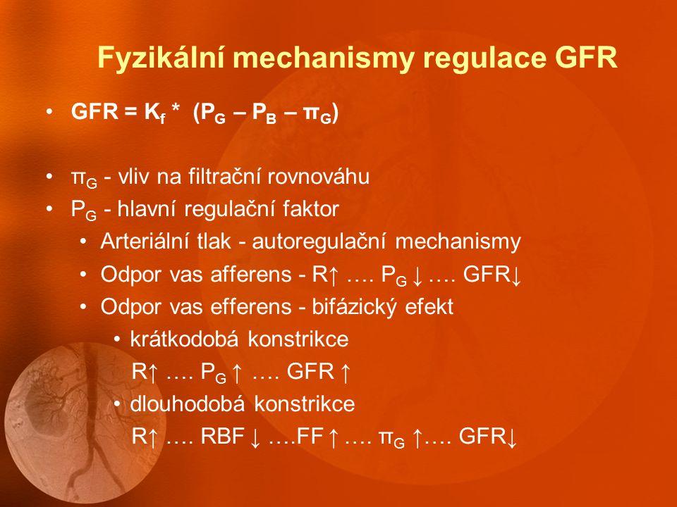 Autoregulace GFR a průtoku krve ledvinami Udržení konstantního GFR Tubulogromerulární zpětná vazba Vazba na a.