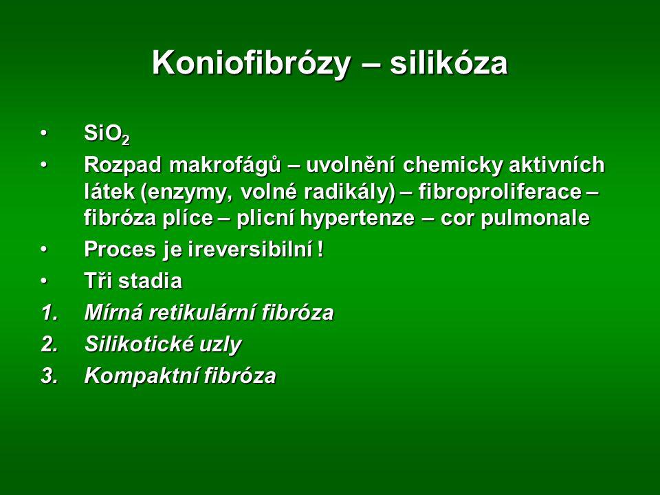 Koniofibrózy – silikóza SiO 2SiO 2 Rozpad makrofágů – uvolnění chemicky aktivních látek (enzymy, volné radikály) – fibroproliferace – fibróza plíce –
