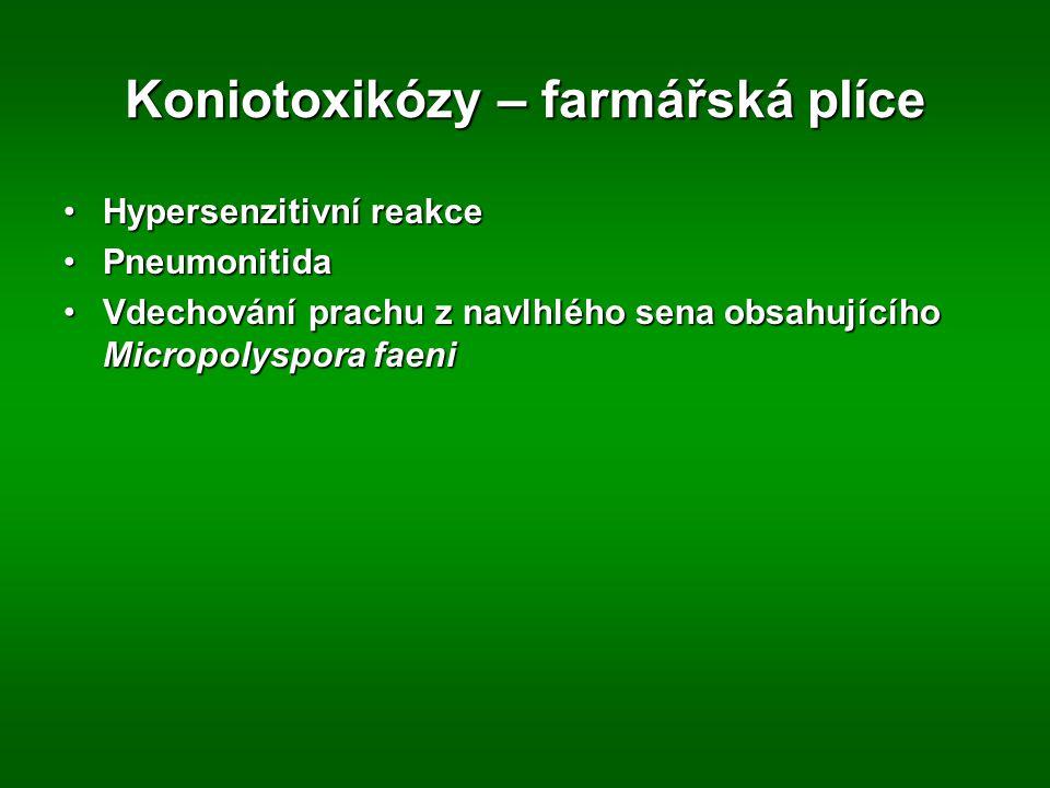 Koniotoxikózy – farmářská plíce Hypersenzitivní reakceHypersenzitivní reakce PneumonitidaPneumonitida Vdechování prachu z navlhlého sena obsahujícího