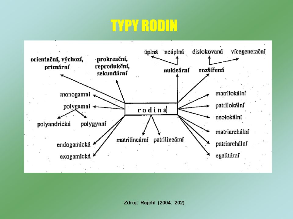 TYPY RODIN Zdroj: Rajchl (2004: 202)